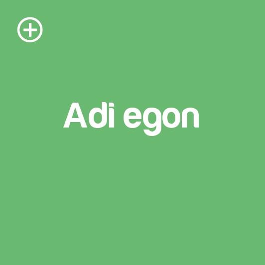 adi-egon