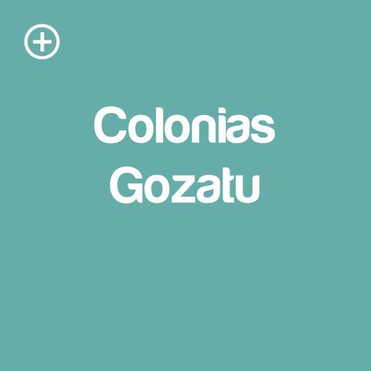 colonia-gozatu-njesus