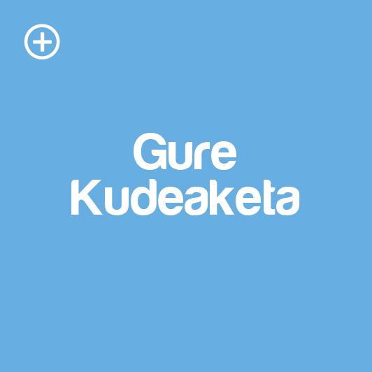 gure-kudeaketa